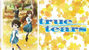 true tears(トゥルー ティアーズ)アニメ無料動画をフル視聴!KissAnimeやアニポ・B9もリサーチ